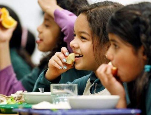 https://www.livekindly.co/meatless-mondays-all-new-york-city-schools/