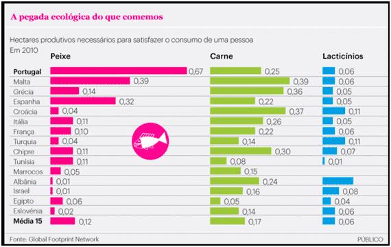 AVP | A pegada ecológica dos portugueses: o impacto do consumo de carne e peixe