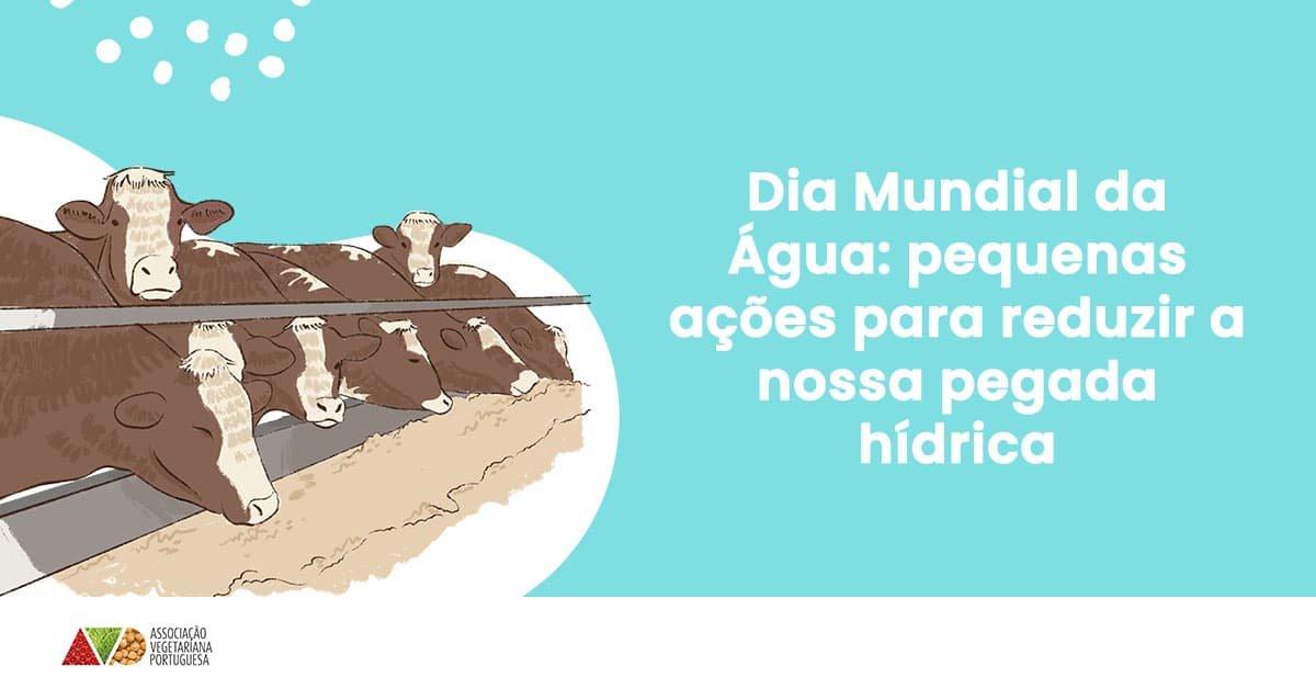 pequenas acoes para reduzir pegada hidrica dia mundia agua